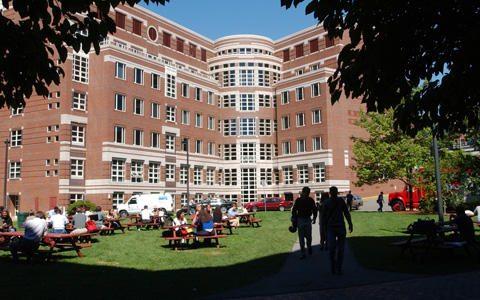 Intercâmbio de férias para universitários